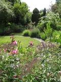 Rendez Vous aux Jardins 2018 -Déambulation libre dans un jardin d'agrément et rencontre avec une passionnée de botanique.