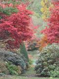 Rendez Vous aux Jardins 2018 -Découverte de l'arboretum de la Sédelle