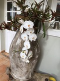 Rendez Vous aux Jardins 2018 -Découverte de l'art floral contemporain
