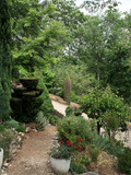Rendez Vous aux Jardins 2018 -Découverte de l'univers d'une rocaille