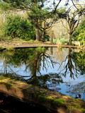 Rendez Vous aux Jardins 2018 -Découverte des astuces du Jardin du Riollet