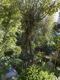 Rendez Vous aux Jardins 2018 -Découverte des jardins de la Lézardière