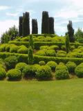 Rendez Vous aux Jardins 2018 -Découverte des jardins de Montplaisir