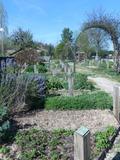 Rendez Vous aux Jardins 2018 -Découverte des jardins de Soyaux