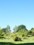 Rendez Vous aux Jardins 2018 -Découverte des jardins privés de la Pépinière Rustic Palm Grove