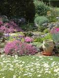 Rendez Vous aux Jardins 2018 -Découverte des plantes de l'époque gallo-romaine