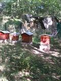 Journées du patrimoine 2016 -Découverte des ruches du fort