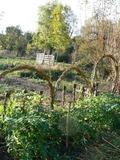 Rendez Vous aux Jardins 2018 -Découverte du jardin botanique d'Auvergne à travers des ateliers :