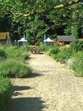 Rendez Vous aux Jardins 2018 -Découverte du Jardin communal Dr. Arouète