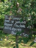 Rendez Vous aux Jardins 2018 -Découverte du jardin de Catherine