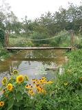 Rendez Vous aux Jardins 2018 -Découverte du jardin de Jan