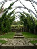 Rendez Vous aux Jardins 2018 -Découverte du jardin de la Chapelle Blanche
