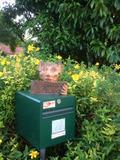 Rendez Vous aux Jardins 2018 -Découverte du Jardin des Lutins