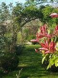 Rendez Vous aux Jardins 2018 -Découverte du jardin du Moulin