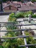 Rendez Vous aux Jardins 2018 -Découverte du jardin médiéval Férolle de Parthenay