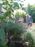 Rendez Vous aux Jardins 2018 -Découverte du jardin textile