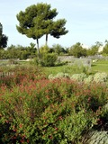 Rendez Vous aux Jardins 2018 -Découverte du parc de 11ha labellisé Eco jardin