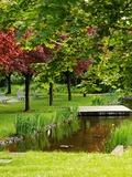 Rendez Vous aux Jardins 2018 -Découverte du parc du Musée Würth