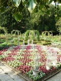 Rendez Vous aux Jardins 2018 -Découverte du Parc et du Jardin du Château d'Arlay