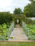 Rendez Vous aux Jardins 2018 -Découverte libre du jardin botanique