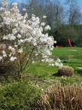 Rendez Vous aux Jardins 2018 -Découvrez le jardin d'Elsa Triolet et Aragon
