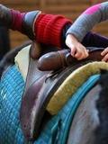 Journées du patrimoine 2016 -Différents ateliers proposés au Haras national de Cluny lors des Journées du Patrimoine
