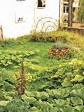 Rendez Vous aux Jardins 2018 -A la découverte de la permaculture au parc naturel Gaume