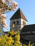 Journées du patrimoine 2016 -Eglise Saint Martin à Chagny