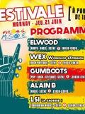 Fête de la musique 2018 - Elwood + Gumboots + LSI