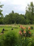 Rendez Vous aux Jardins 2018 -Découverte du jardin de Cairnhill