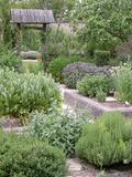 Rendez Vous aux Jardins 2018 -Découverte du jardin monastique - Atelier et visite