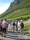 Journées du patrimoine 2016 -Escapade dans le vignoble de Montmélian