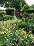Rendez Vous aux Jardins 2018 -Exposants au jardin