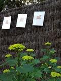 Rendez Vous aux Jardins 2018 -Exposition collective de gravures