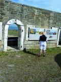 Journées du patrimoine 2016 -Exposition Flore du Littoral, Fort Neuf
