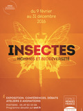 Journées du patrimoine 2016 -Exposition « Insectes.. Hommes et biodiversité »