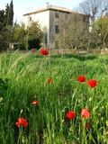 Rendez Vous aux Jardins 2018 -FEST'AQUI des Pays latins - Rencontres au coeur des jardins de la Bastide Marin