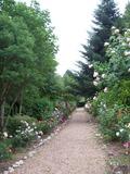 Rendez Vous aux Jardins 2018 -Fête de la Rose