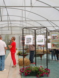 Rendez Vous aux Jardins 2018 -Exposition