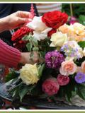 Rendez Vous aux Jardins 2018 -Visite commentée de 'la Closeraie Jardin de roses'