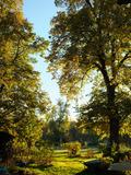 Rendez Vous aux Jardins 2018 -Visite guidée de l'exposition