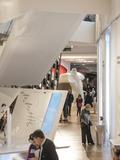 Journées du patrimoine 2016 -Visite libre de la galerie de l'Homme