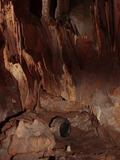 Journées du patrimoine 2016 -Visite commentée de la grotte préhistorique de Foissac