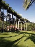 Rendez Vous aux Jardins 2018 -Jardin de l'habitation Saint-Etienne : «il était une fois un jardin»