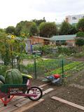 Rendez Vous aux Jardins 2018 -Iles et jardins des Bords de Marne à Créteil