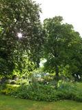 Rendez Vous aux Jardins 2018 -Déjeuner au jardin