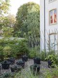 Rendez Vous aux Jardins 2018 -Incroyables végétaux
