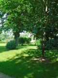 Rendez Vous aux Jardins 2018 -Jardin de la Préfecture : jeux d'extérieur et jeux du patrimoine autour des jardins