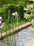 Rendez Vous aux Jardins 2018 -Visite libre du jardin du Cassel