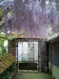 Rendez Vous aux Jardins 2018 -Visite libre du jardin du Grand Déluge